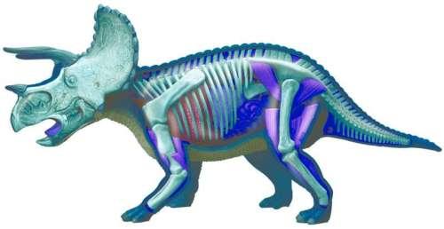 Triceraptops Puzzle